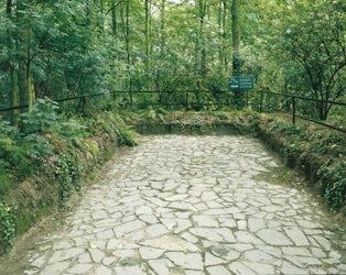Installatie: 'Romeinse Straat'