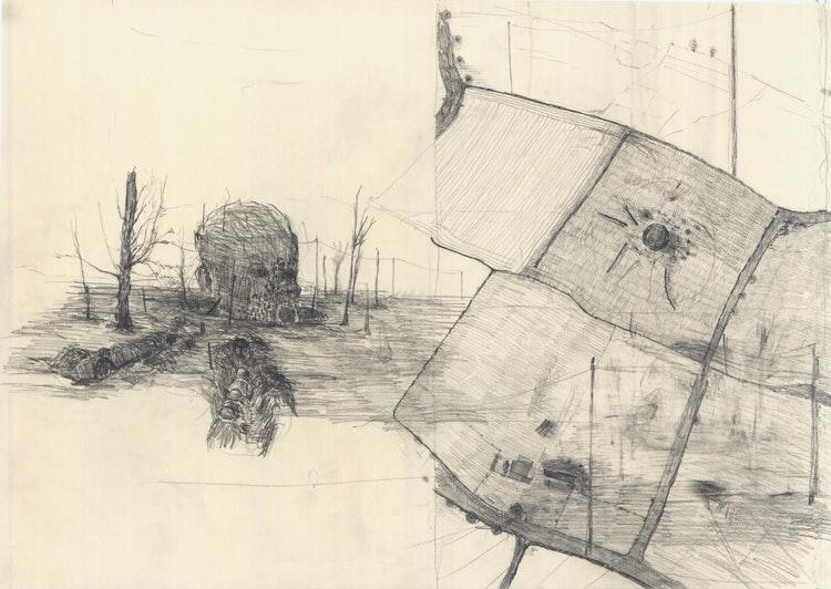 Kop in veld (plattegrond)