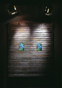 Roll-down Shutter with Flowers