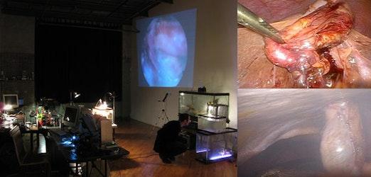 Installatiezicht FLUXspace, Phildelphia, en video stills © Angelo Vermeulen