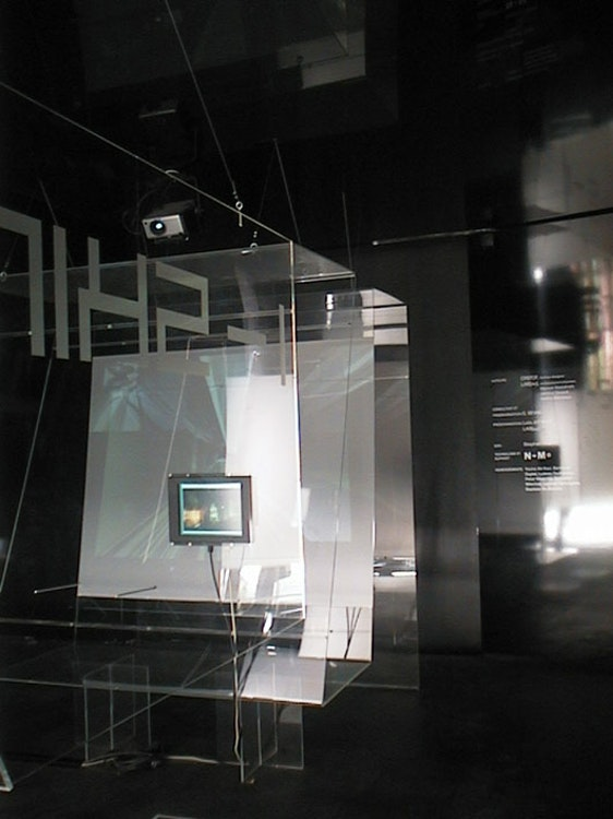 i-skin, electronic bodyness