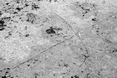 Scale 1:2500 (Venice #2)