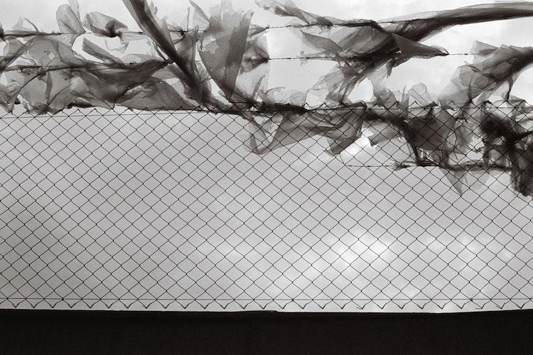 Plastic & wind
