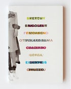 Untranslatables ( a guide to translingual dialogue)