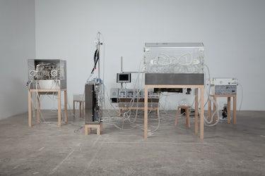 Tuur Van Balen,The Immortal, 2012