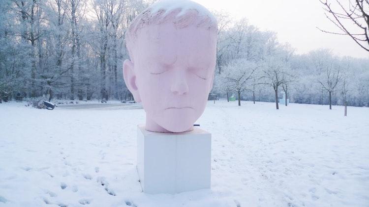 Big pink head