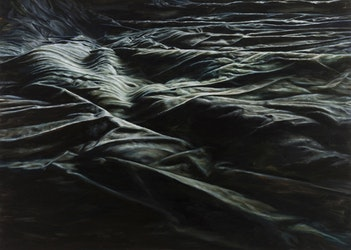 Salon blanc, solotentoonstelling Cindy Wright, 2013