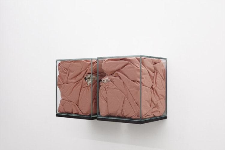 Sarah Westphal - Nest