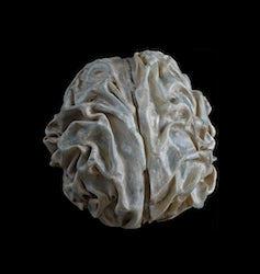 Sarah Westphal - Gehirn, Gestirn, Gestein