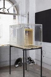 Annemie Maes - Transparant beehive (sculpture)