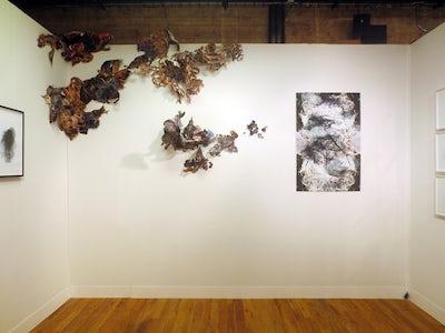 Hedwig Brouckaert - VOLTA NY 2014