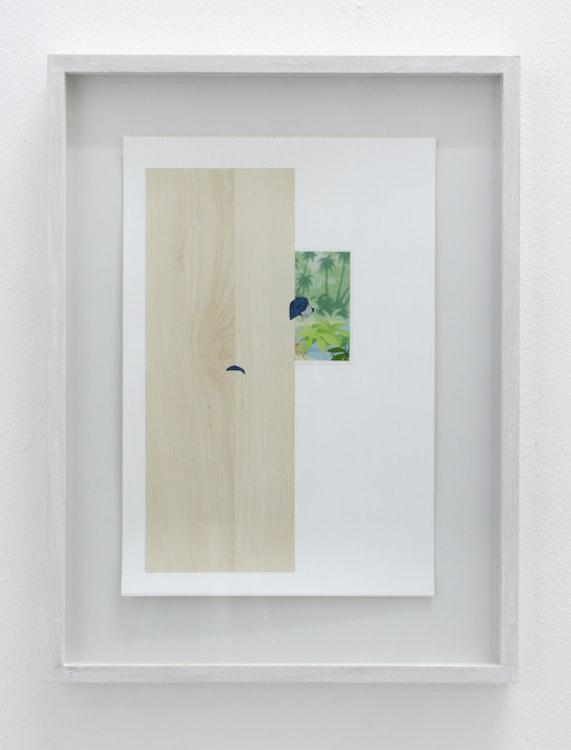 Maarten Van Roy - Untitled (Balu), 2014
