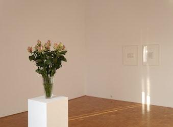 Edith Dekyndt - The Painter's Enemy, 2012