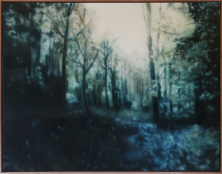 Paintings to myself when I'm 80, a forrest