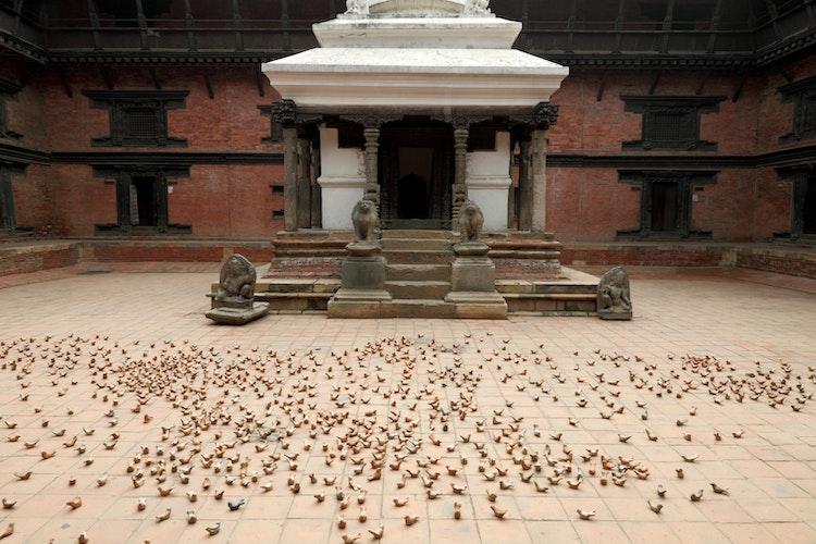 Dust bathing, 2017. Patan Museum. Kathmandu Triennal