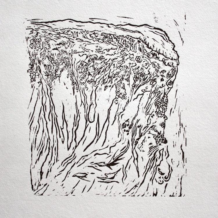 'Lorifa', lino op japans papier, 2017