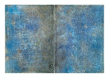 Cosmoses Cosmosis (Diptych)
