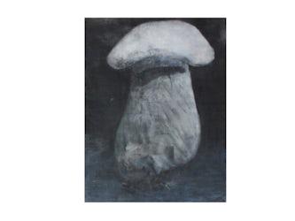 Big-white-mushroom