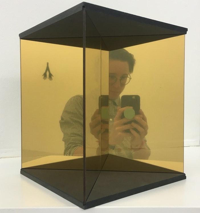 4D True Mirror