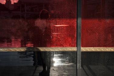 'Open light', USA, 2018