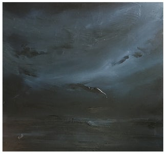 Joris Vanpoucke Marine in grey